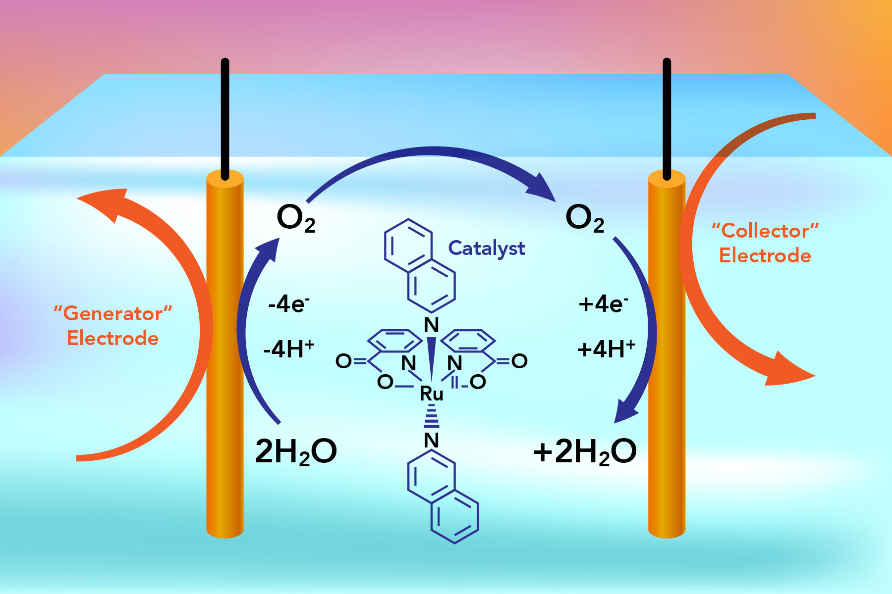 Collector-Generator Cells: Harvesting Oxygen from Water | Energy ...
